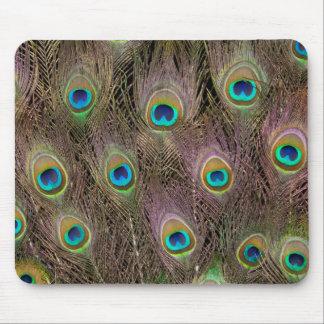 Champ des plumes de paon tapis de souris