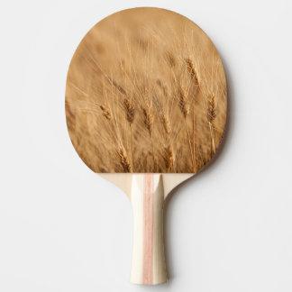 Champ d'orge raquette de ping pong