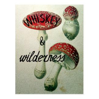 Champignon de whiskey et de région sauvage carte postale
