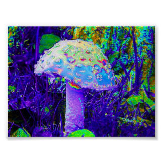 champignon psychédélique affiches