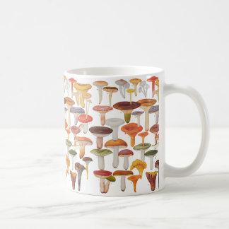 Champignons de champignons de paris de Les Mug