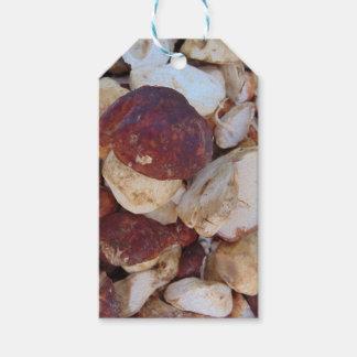 Champignons de Porcini Étiquettes-cadeau