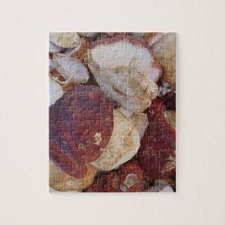 Champignons de Porcini Puzzle