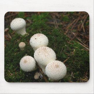 Champignons de vesse-de-loup de lycoperdon tapis de souris