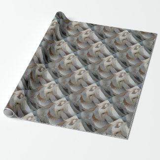 Champignons d'huître papier cadeau noël