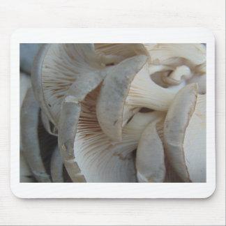 Champignons d'huître tapis de souris