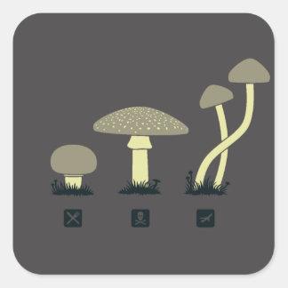 Champignons (nourriture, poison, hauts) sticker carré