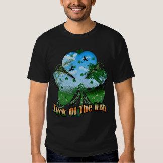 Chance du T-shirt irlandais avec le paysage à