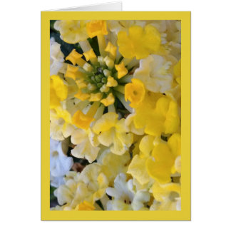 Chanson heureuse de fleurs de jaune de solénoïde. carte de vœux