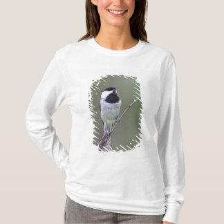 Chant de chickadee de Caroline T-shirt