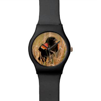 Chant masculin de merle à ailes rouges montres bracelet