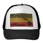 Chapeau de camionneur d'Hawaï Rasta Casquette