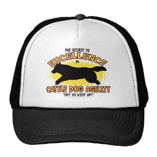 Chapeau de secret de chien de bétail d'agilité casquette