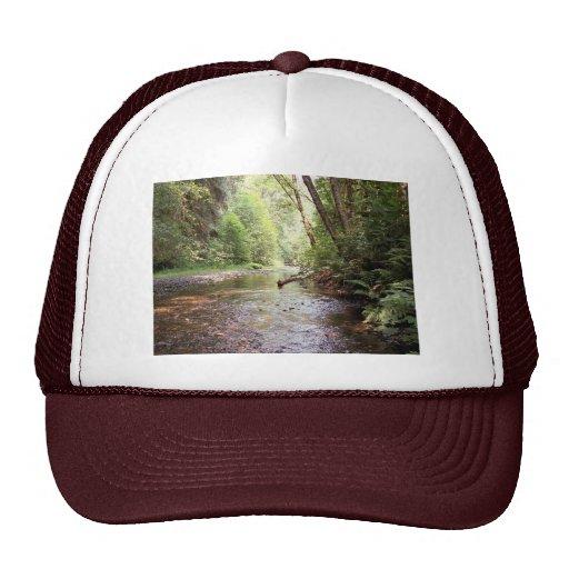 Chapeau de séquoias de Prairie Creek Casquette