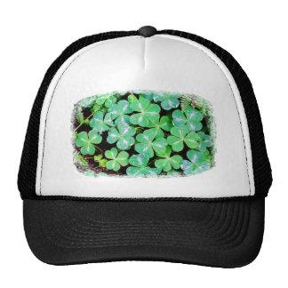 Chapeau de trèfle de séquoias casquettes de camionneur