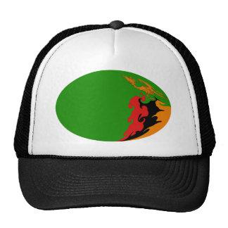 Chapeau Gnarly de drapeau de la Zambie Casquettes