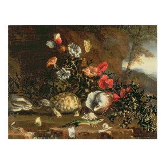 Chardons, fleurs, reptiles et papillons à coté carte postale