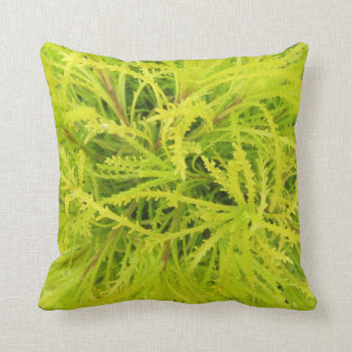 CHARTREUSE ! Coussin
