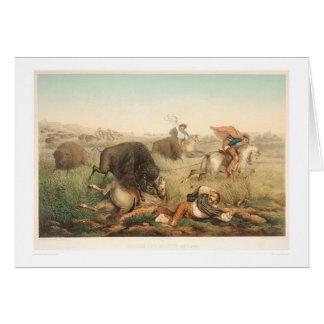 Chasse à bison (0008A) Carte De Vœux