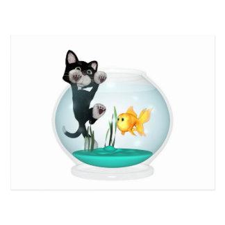 chat accrochant sur le bocal à poissons carte postale