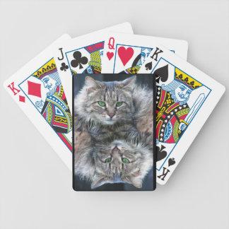 Chat aux yeux verts pelucheux mou jeu de cartes