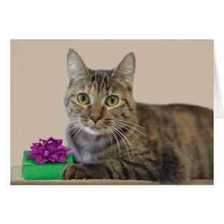 Chat avec la carte d'anniversaire de cadeau