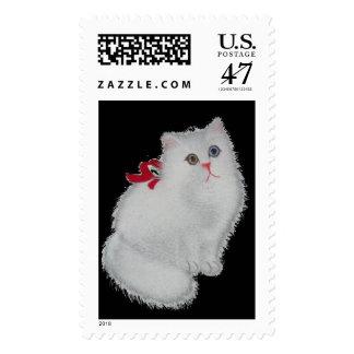 Chat blanc avec le ruban rouge