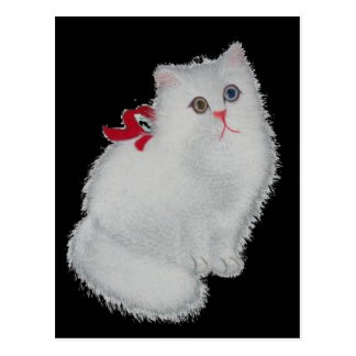 Chat blanc cartes postales