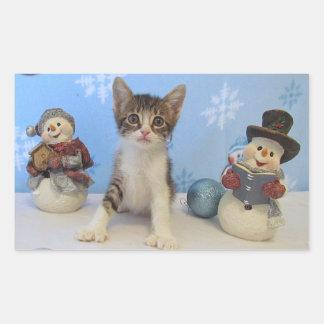 Chat, chaton, Noël, délivrance, photo Sticker Rectangulaire