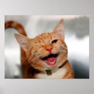 Chat clignant de l'oeil - chat orange - les chats poster