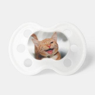 Chat clignant de l'oeil - chat orange - les chats tétine