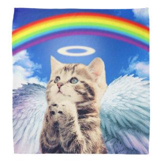 chat d'arc-en-ciel - prière de chat - chat - chats bandana