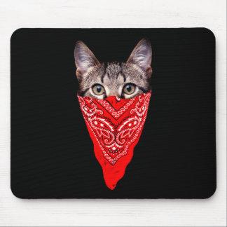 chat de bandit - chat de bandana - bande de chat tapis de souris