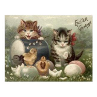 Chat de chaton coloré par poussin d'oeufs de Pâque Cartes Postales