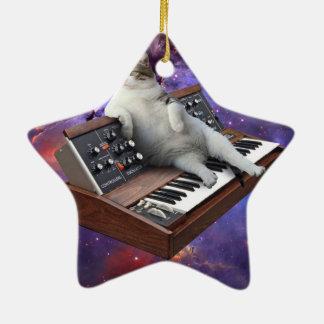 chat de clavier - memes de chat - chat fou ornement étoile en céramique