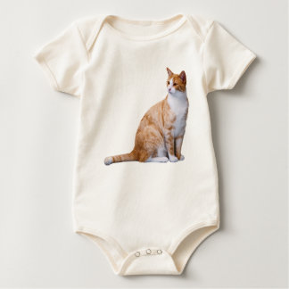 Chat de gingembre body
