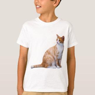 Chat de gingembre t-shirt