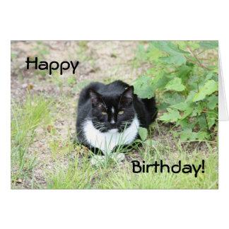 Chat de joyeux anniversaire carte de correspondance