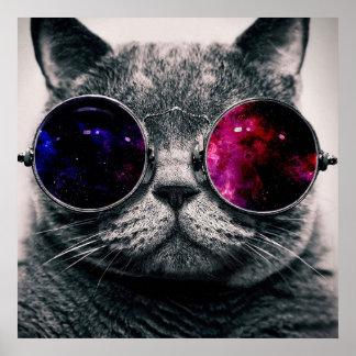 chat de lunettes de soleil affiches