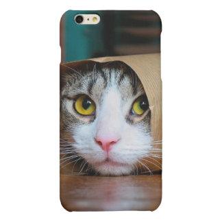 Chat de papier - chats drôles - meme de chat -