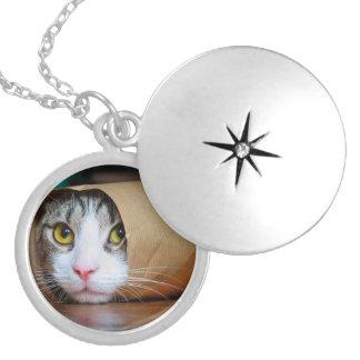 Chat de papier - chats drôles - meme de chat - médaillon avec fermoir