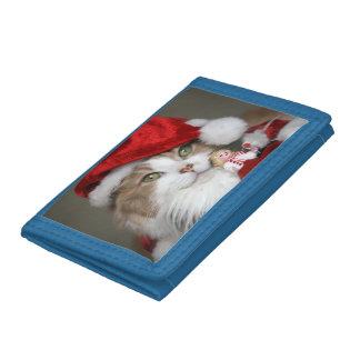 Chat de Père Noël - chat de Noël - chatons mignons