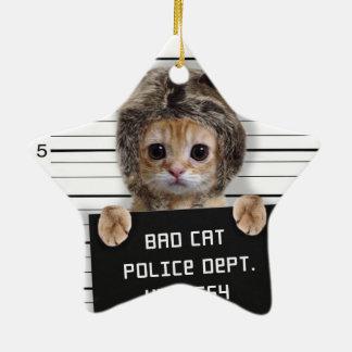 chat de photo - chat fou - minou - félin ornement étoile en céramique