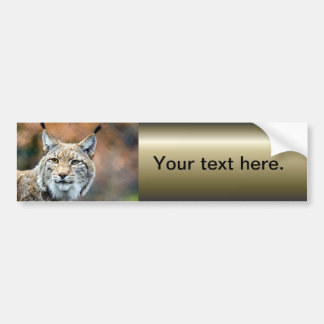 Chat de prédateur de faune de chat sauvage de Lynx Autocollant De Voiture