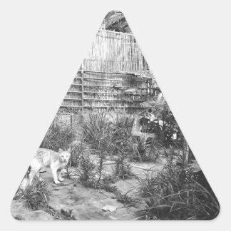 chat de rue sticker triangulaire