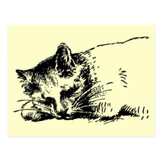 Chat de sommeil de carte postale