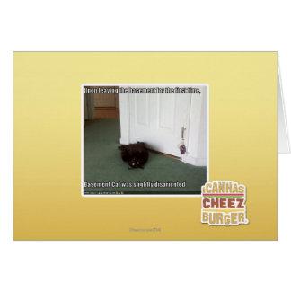 Chat de sous-sol, légèrement désorienté cartes