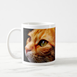 Chat de tigre assez orange mug