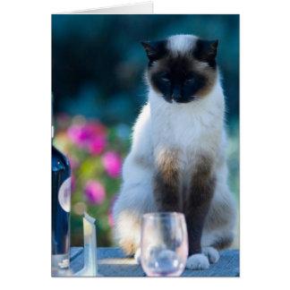 Chat de vin carte de vœux