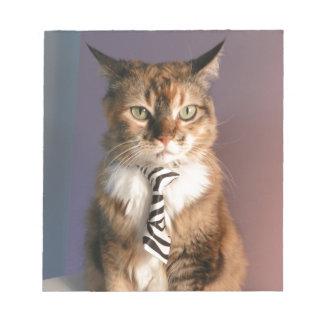 Chat domestique dans une cravate d'affaires blocs mémo